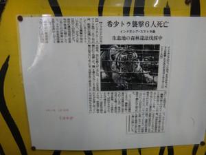 Dsc01137s